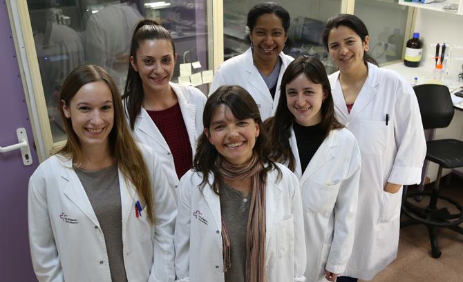 DIAGNOSTIC NANOTOOLS (DINA): Diagnostic Nanotools for Fast Assay and Biosensor Development.