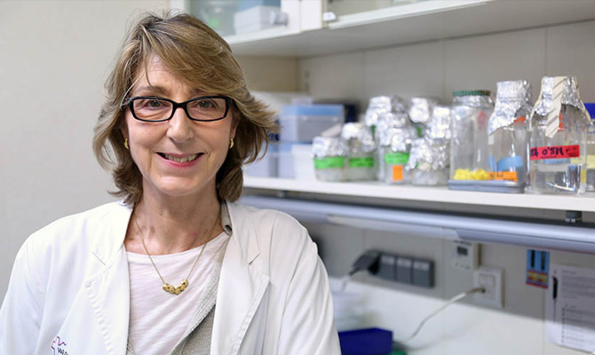 Dr. Anna Meseguer receives grant from the American Association for Cancer Research
