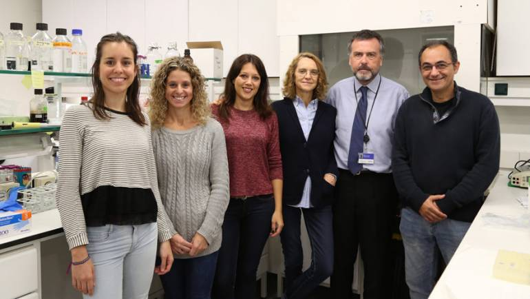 VHIR researchers receive European funding for liver disease research