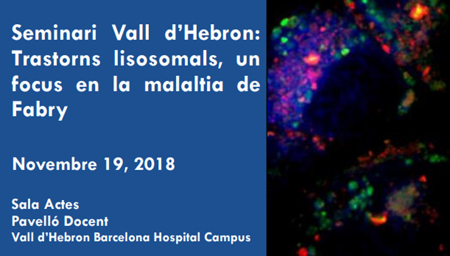 Vall d'Hebron organizes a seminar on Lysosomal Rare Disorders: Focus on Fabry Disease